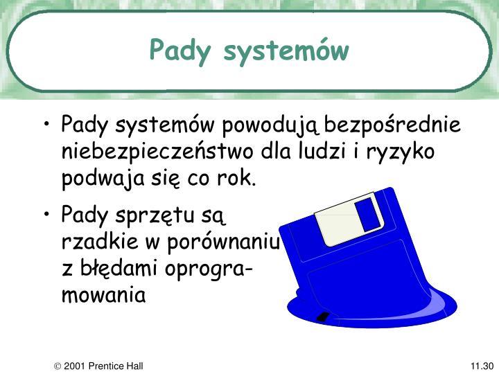 Pady systemów