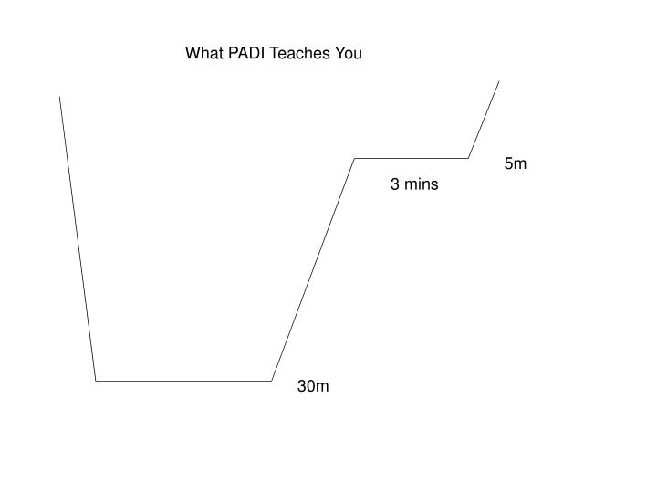 What PADI Teaches You