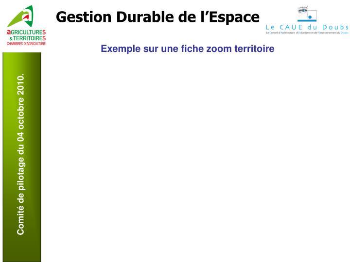 Exemple sur une fiche zoom territoire