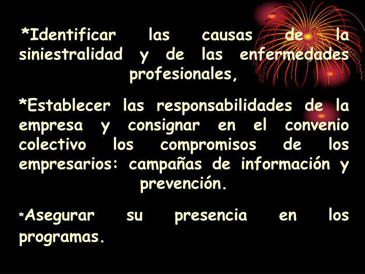 *Identificar las causas de la siniestralidad y de las enfermedades profesionales,