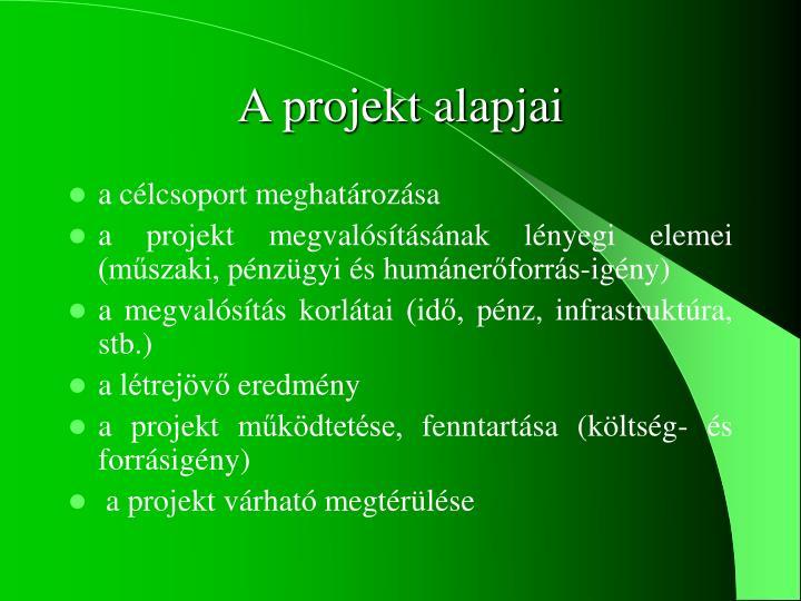 A projekt alapjai