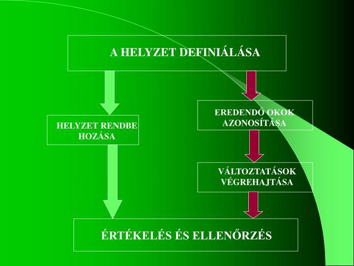 A HELYZET DEFINIÁLÁSA