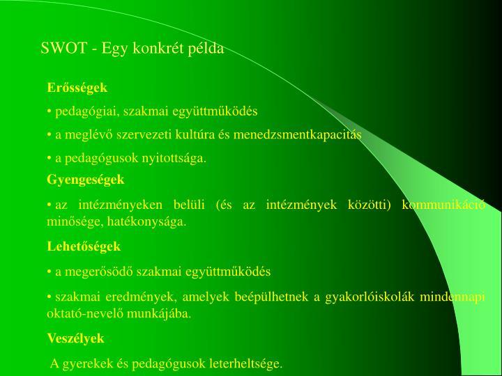 SWOT - Egy konkrét példa