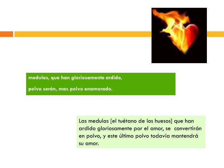 medulas, que han gloriosamente ardido,