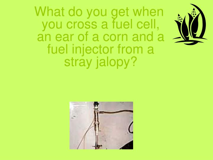 What do you get when you cross a fuel cell, an ear of a corn and a fuel injector from a stray jalopy?