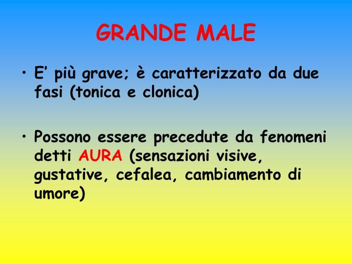 GRANDE MALE