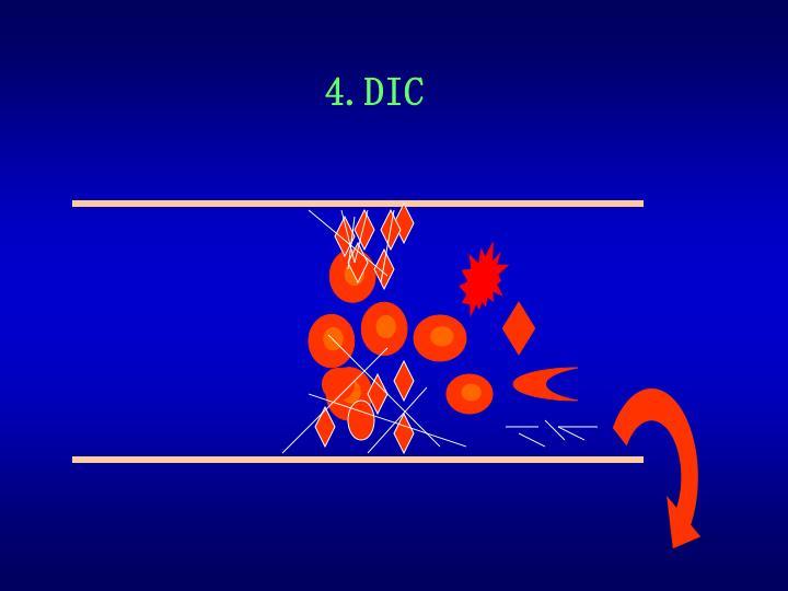 4.DIC