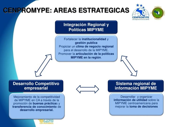 CENPROMYPE: AREAS ESTRATEGICAS