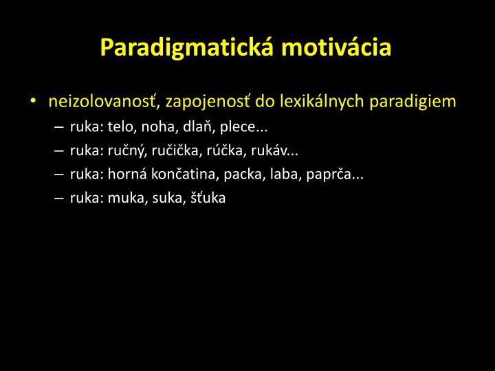 Paradigmatická motivácia