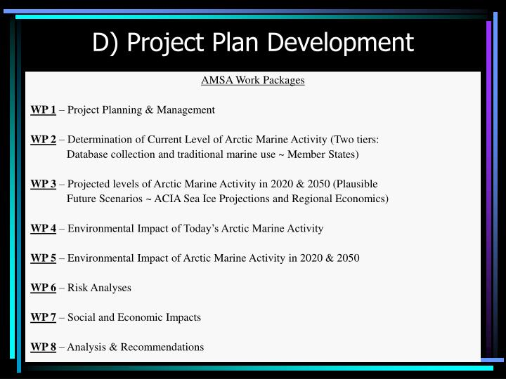 D) Project Plan Development