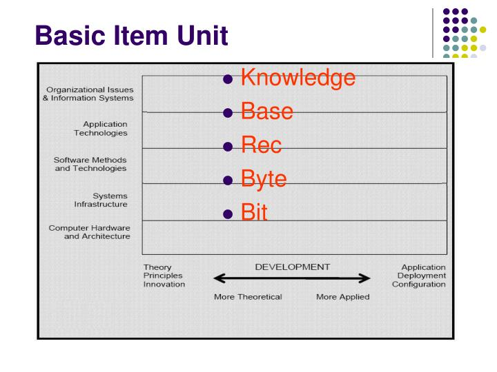 Basic Item Unit