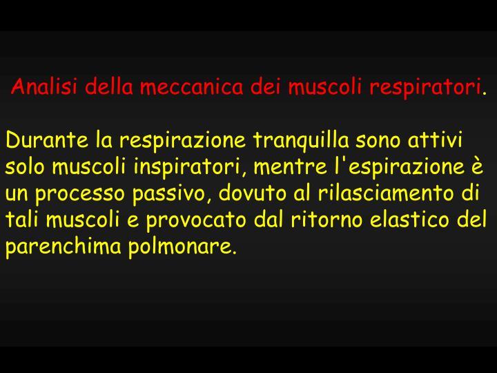 Analisi della meccanica dei muscoli respiratori