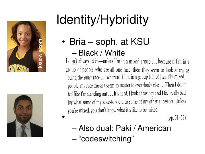 Identity/Hybridity