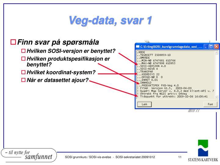 Veg-data, svar 1