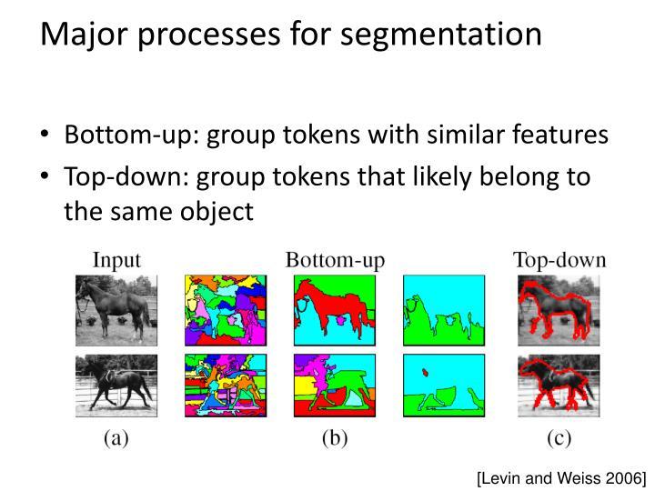 Major processes for segmentation