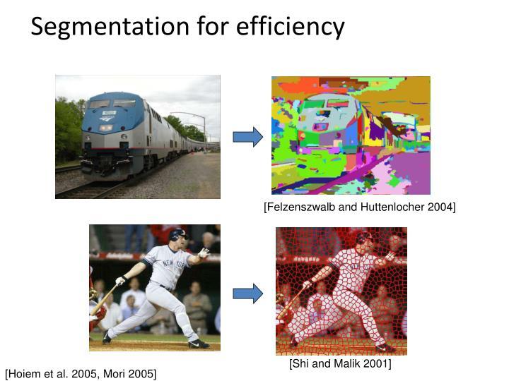 Segmentation for efficiency