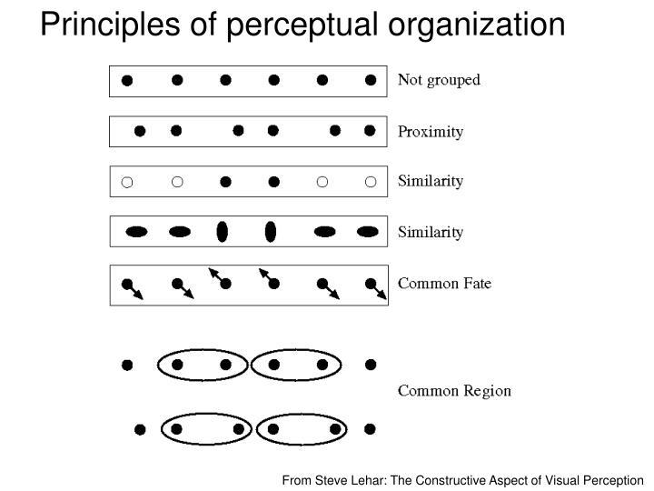 Principles of perceptual organization