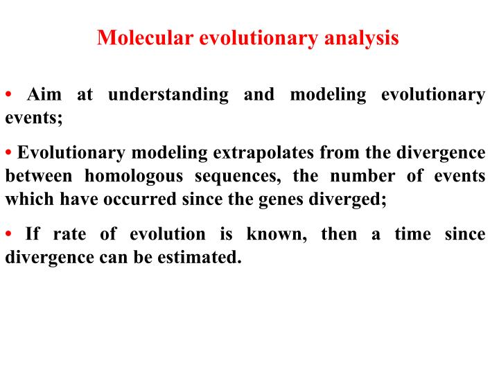 Molecular evolutionary analysis