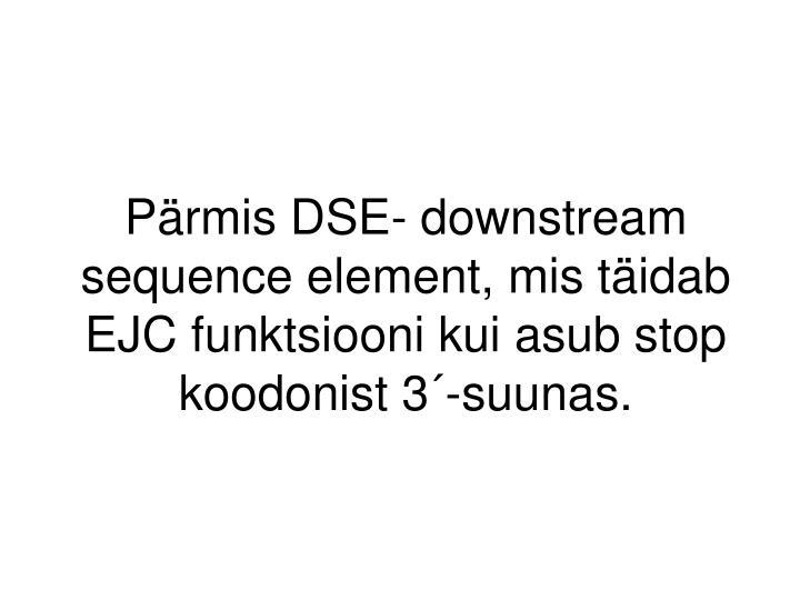 Pärmis DSE- downstream sequence element, mis täidab EJC funktsiooni kui asub stop koodonist 3´-suunas.