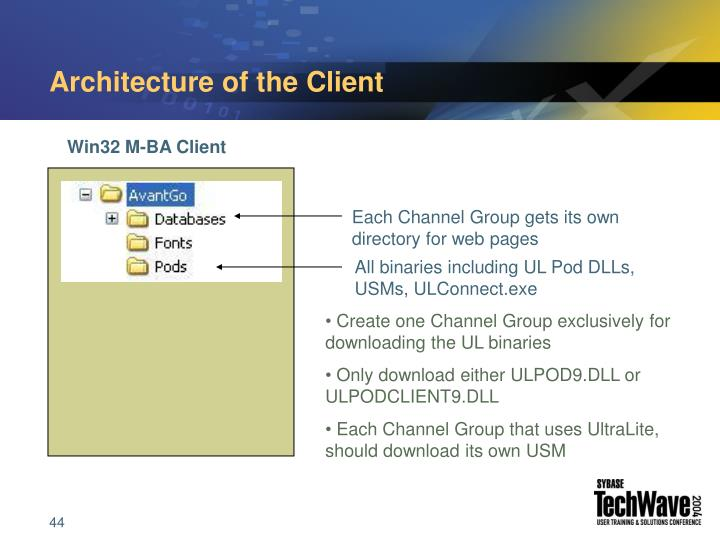 Architecture of the Client