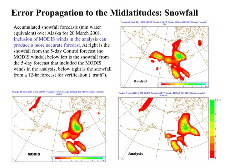 Error Propagation to the Midlatitudes: Snowfall