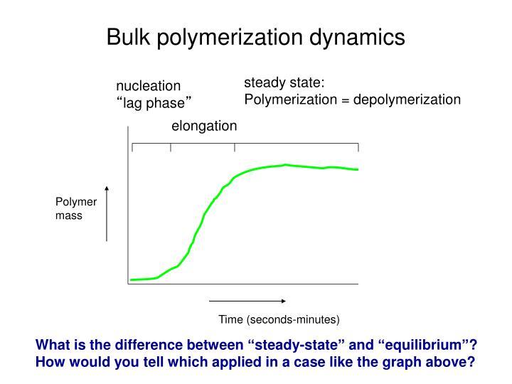 Bulk polymerization dynamics