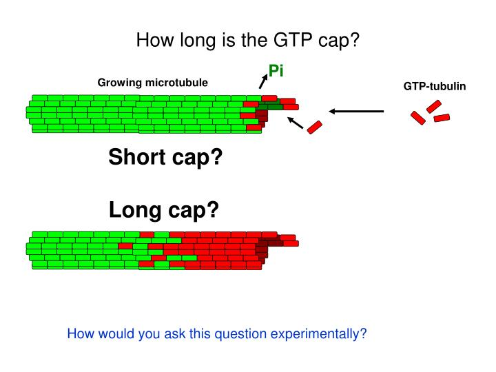 How long is the GTP cap?