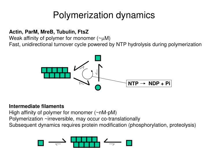 NDP + Pi