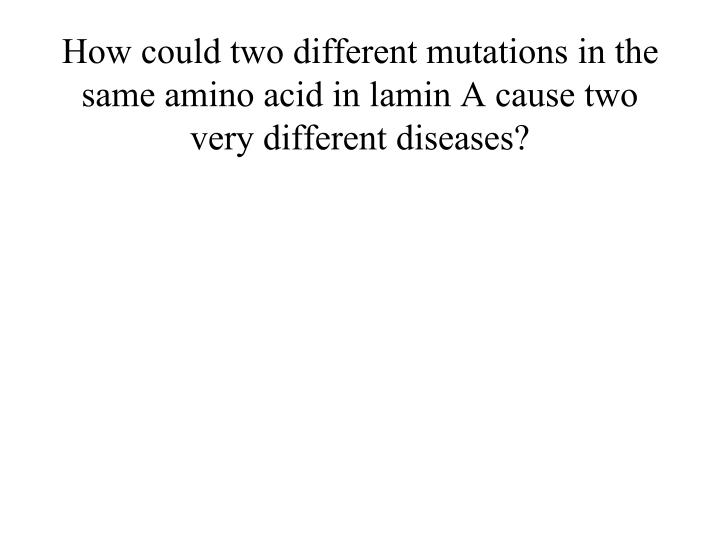 How could two different mutations in the same amino acid in lamin A cause two very different diseases?