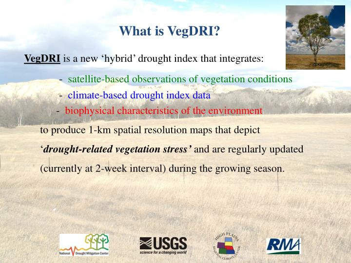 What is VegDRI?