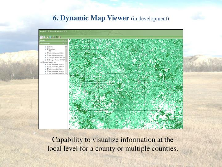 6. Dynamic Map Viewer