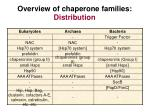 overview of chaperone families distribution