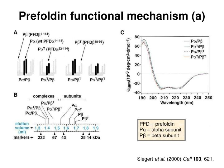 Prefoldin functional mechanism (a)