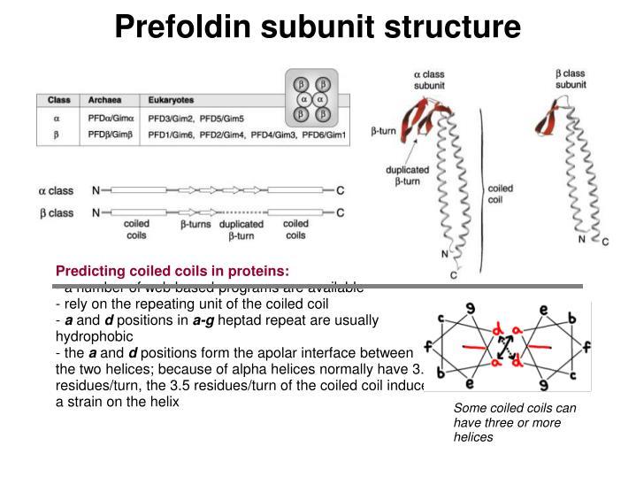 Prefoldin subunit structure