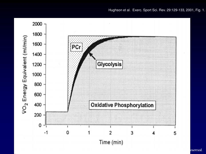 Hughson et al.  Exerc. Sport Sci. Rev. 29:129-133, 2001, Fig. 1.