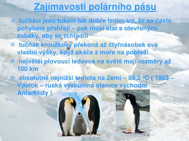 Zajímavosti polárního pásu