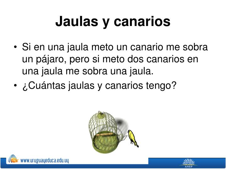 Jaulas y canarios