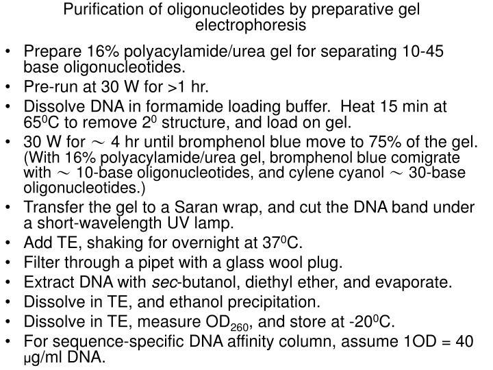 Purification of oligonucleotides by preparative gel electrophoresis