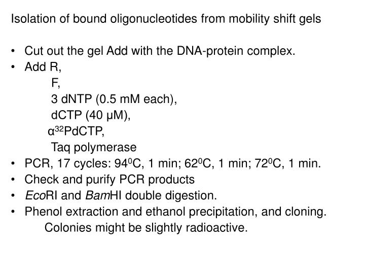 Isolation of bound oligonucleotides from mobility shift gels