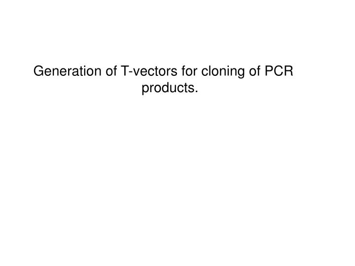 Generation of T-vectors for cloning of PCR products.