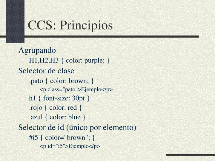 CCS: Principios