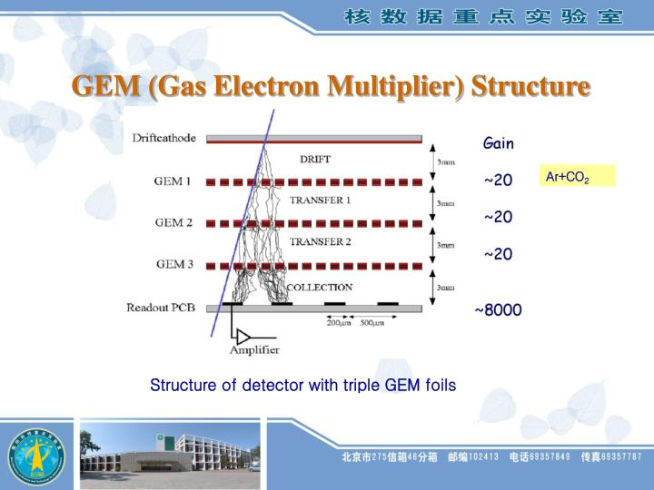 GEM (Gas Electron Multiplier) Structure
