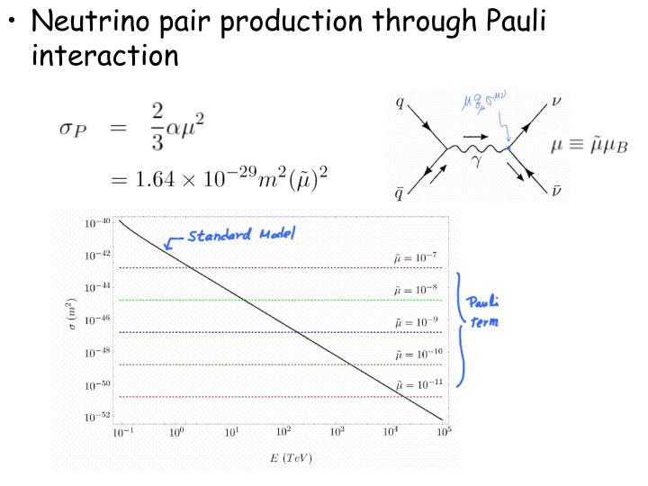 Neutrino pair production through Pauli interaction