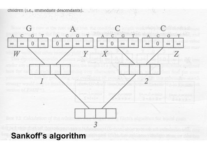 Sankoff's algorithm