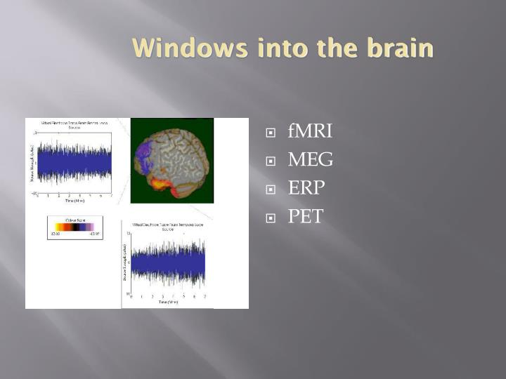 Windows into the brain