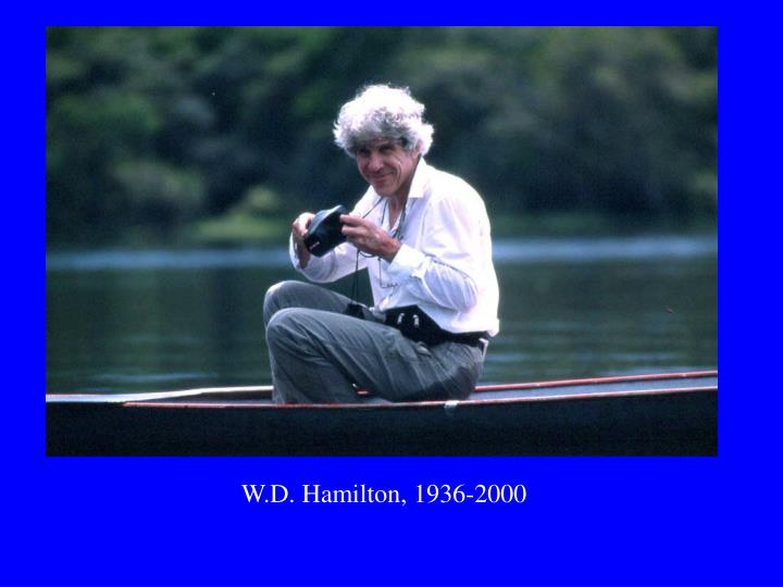W.D. Hamilton, 1936-2000