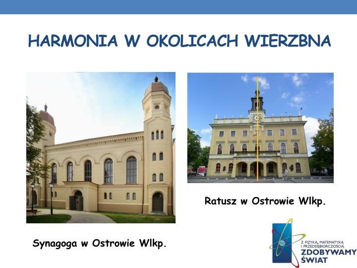 Harmonia w Okolicach Wierzbna