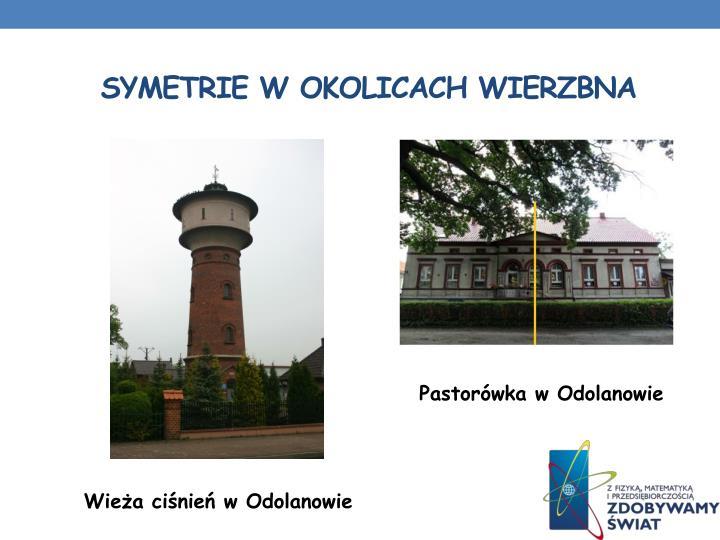 symetrie w Okolicach Wierzbna