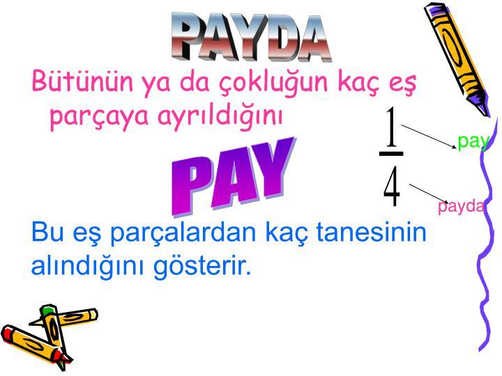 PAYDA