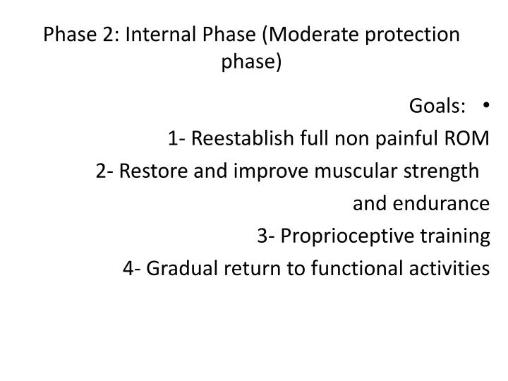 Phase 2: Internal Phase (Moderate protection phase)